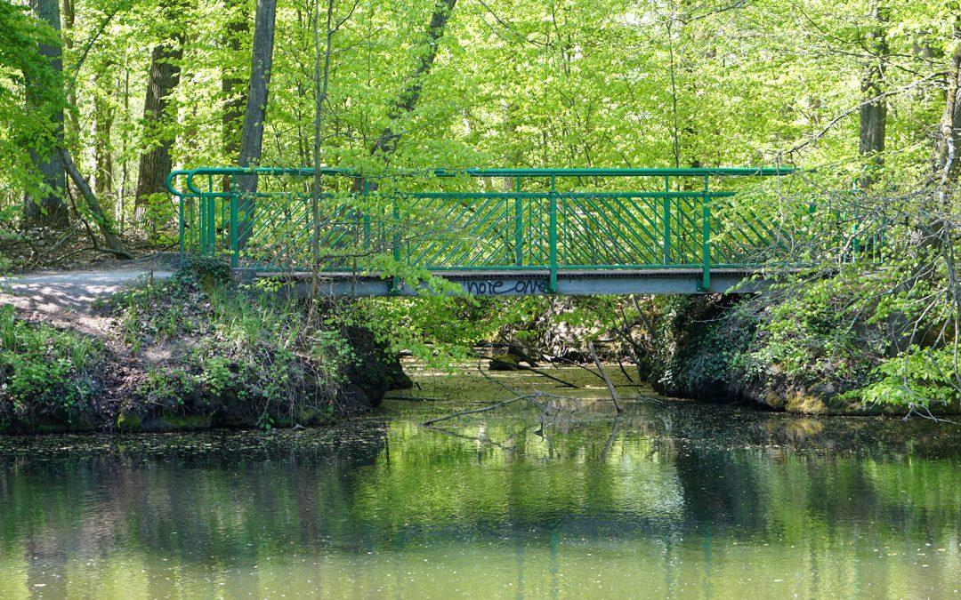 Pleistermühle – Werse Ufer Runde von Handorf