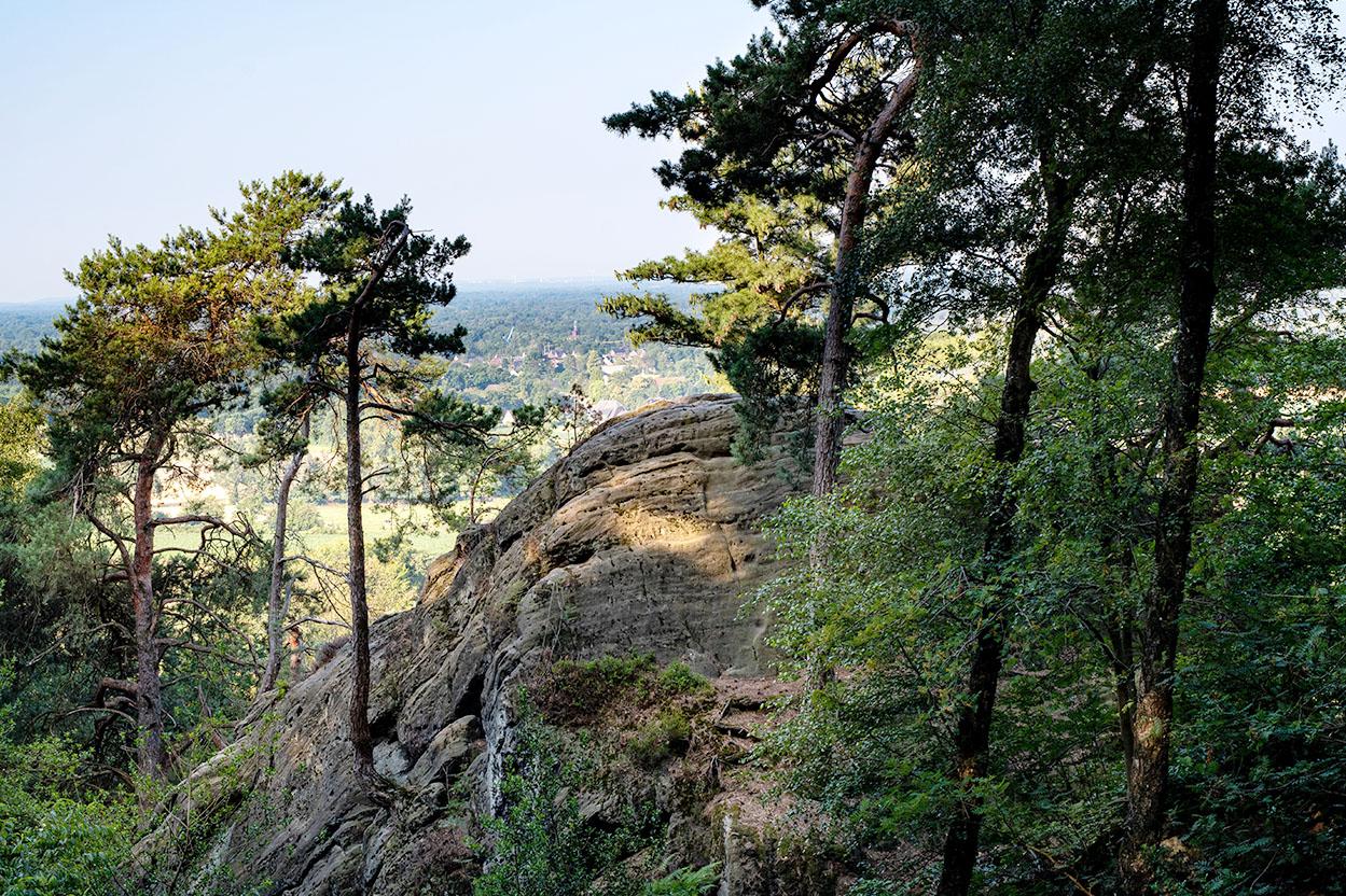 Bocketal Blick – Trail durch Schlucht Runde von Tecklenburg